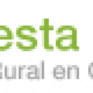 logo2 300x300 - logo2