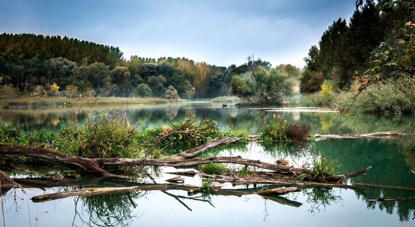rio henaresresiduos